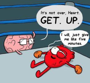 5014af6db687f33f3d40fca536ed1703--brain-the-times